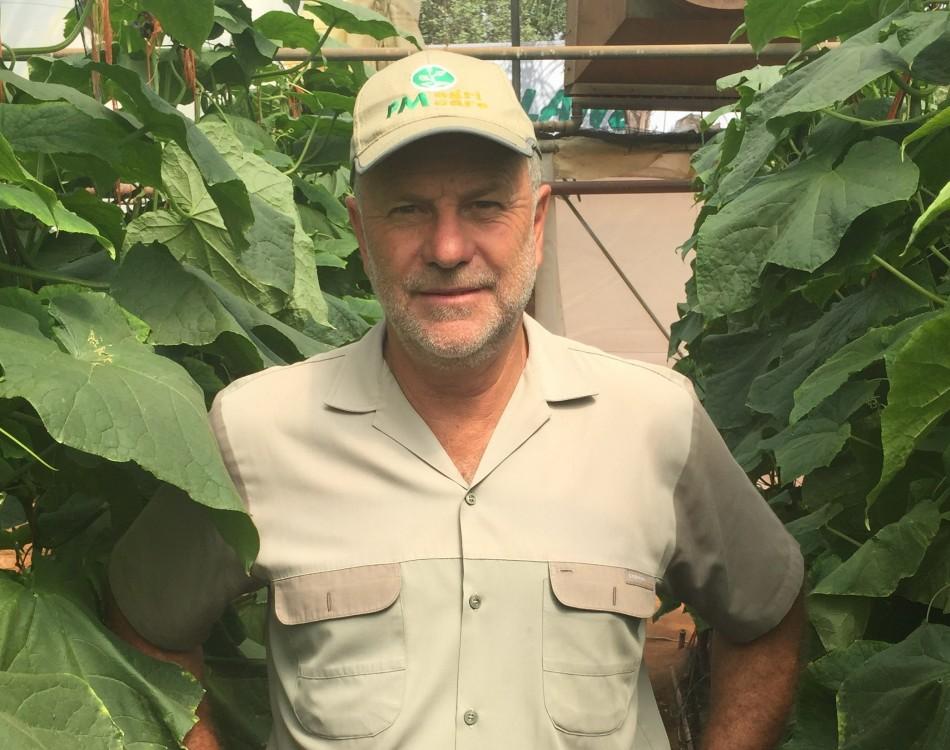 South Africa grower in cucumber crop